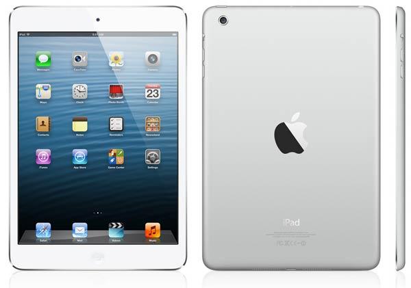 iPad Mini, usos y aplicaciones profesionales